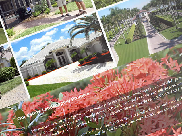 landscaping-website3