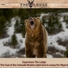 The Lodge Website
